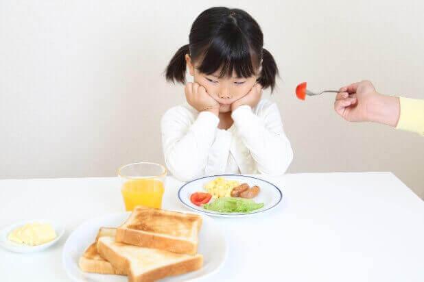 食育の実践【偏食への対応】
